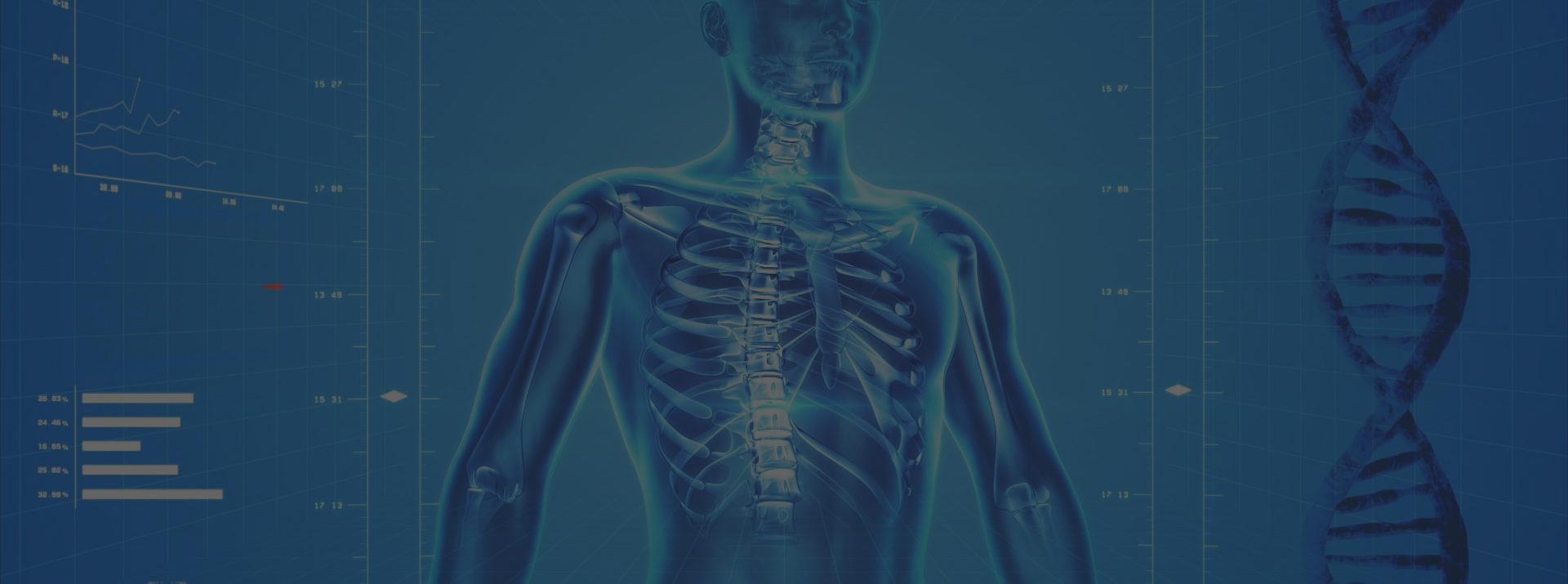 Expliquer en termes simples cette vision globale du corps humain